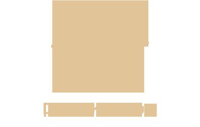 David Krynauw Logo